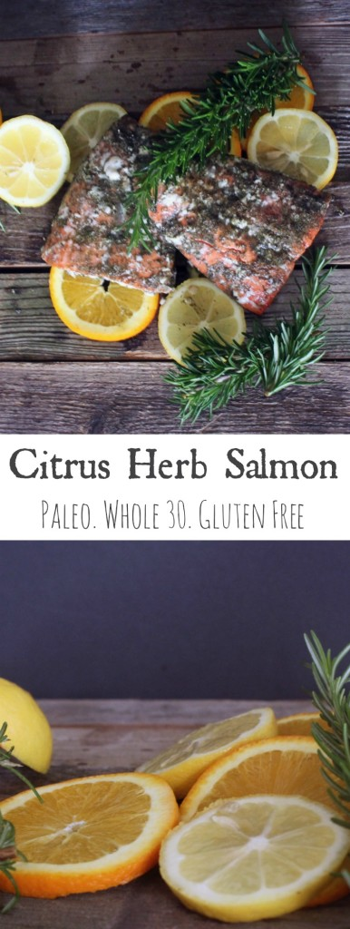 Citrus Herb Salmon Pin