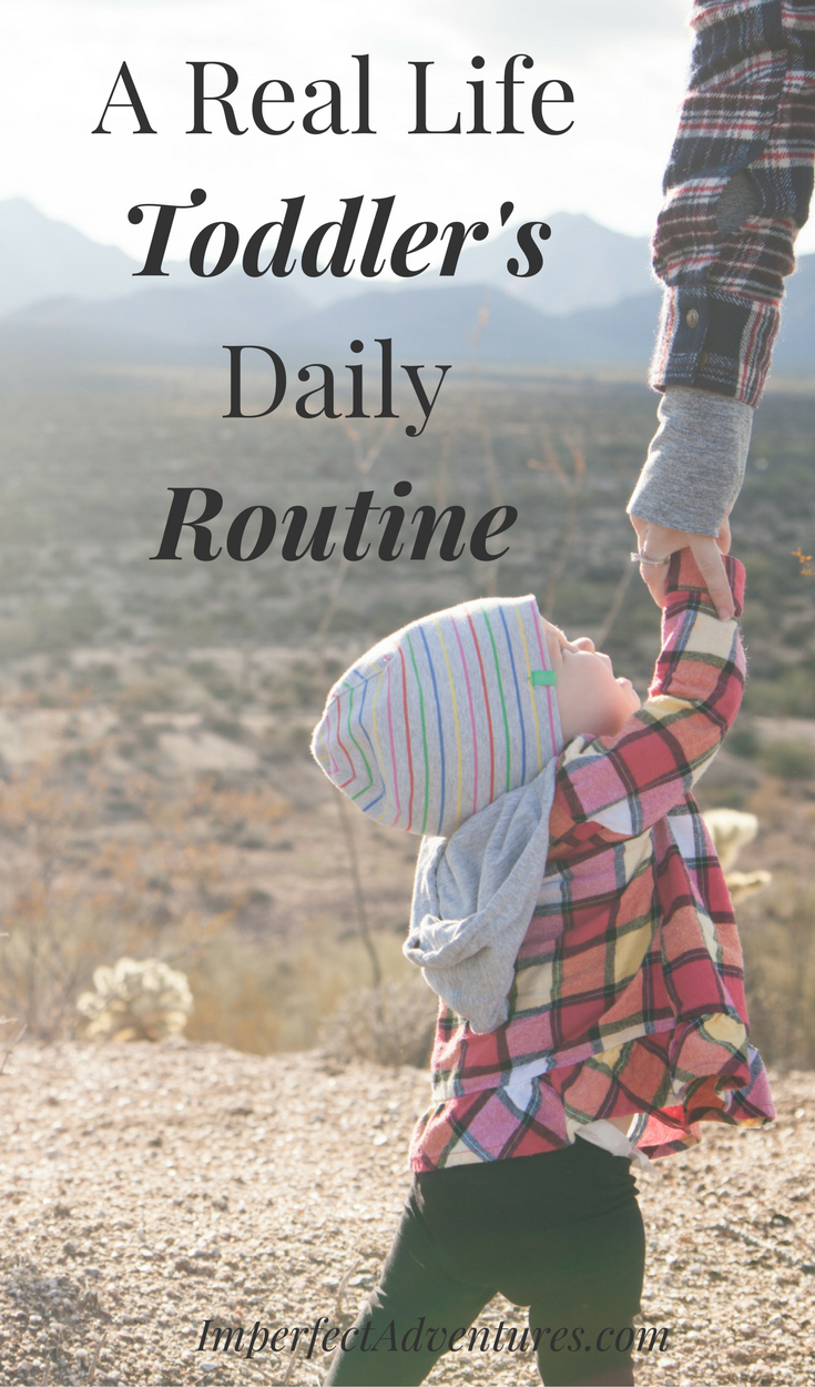 A Purposeful  Day in the Life of a Toddler